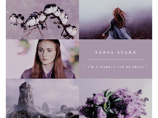 Sansa Stark is the second child of Eddard Stark and Catelyn Stark. She was born and raised in Winterfell, until leaving with her father and sister at the beginning of the series. She has a younger sister Arya Stark, two younger brothers Rickon Stark and Bran Stark, as well as an older brother Robb Stark and an older illegitimate half-brother, Jon Snow.