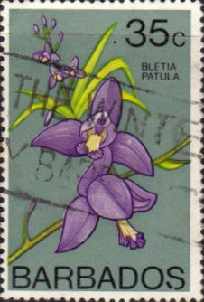 Barbados 1974 Orchids SG 495 Fine Used Scott 406 Other West Indies and British Commonwealth Stamps HERE!