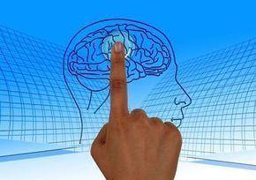Nie wiesz jak poprawić pamięć i zwiększyć wydajność swojego mózgu? Oto 5 prostych kroków i 10 najlepszych naturalnych boosterów pamięci. Do dzieła!