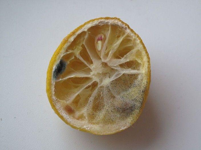 Ne jetez plus le citron !