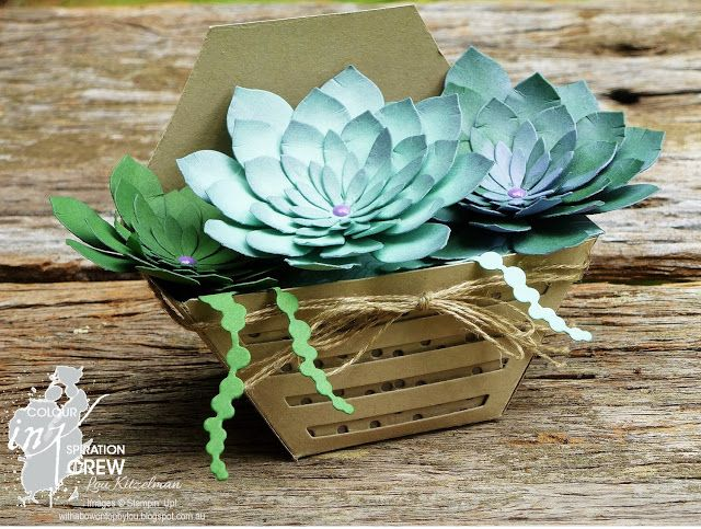 Oh so succulent, Stampin' Up!, with a bow on top, CI02
