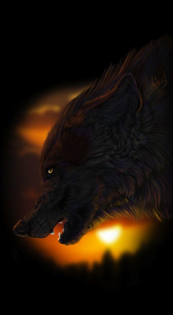 ☆ MRAK :¦: Art By WolfRoad ☆