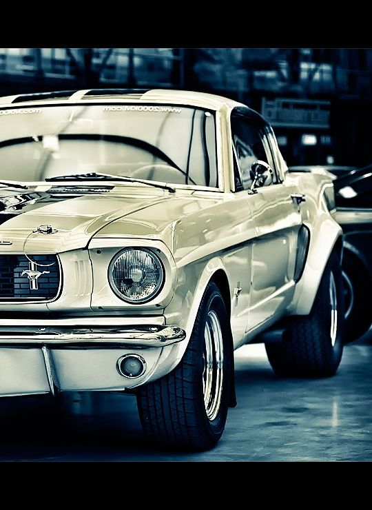 Classic Car for Husbands 50th birthday so she can look coo!  Mean White Mustang