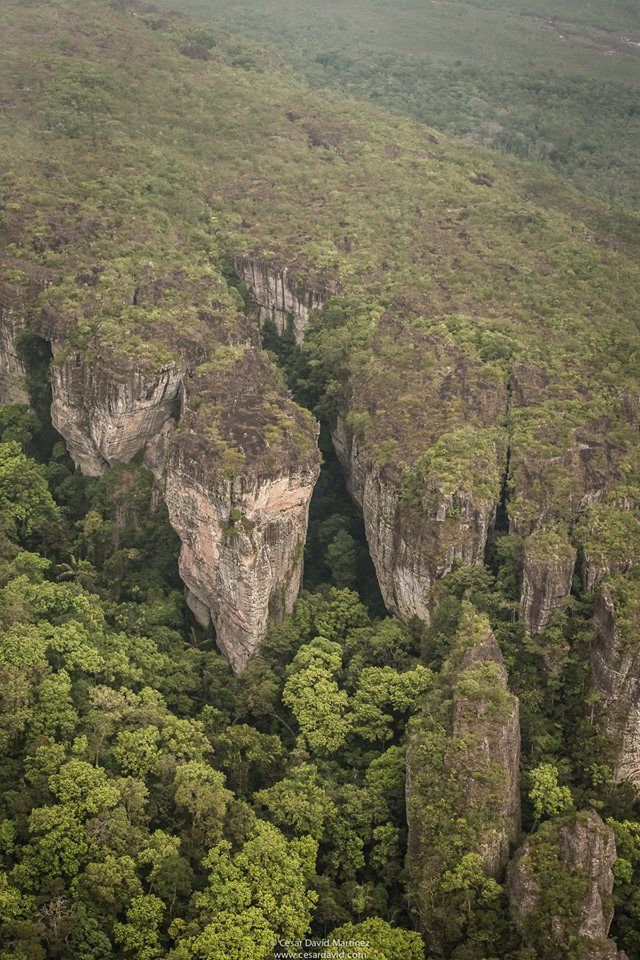 "The ""Fertile Valley"" in the Chiribiquete National Park. This park is one of Colombias biggest protected Areas. Here you can find some of the oldest rock formations of the planet. #colombia #Nationalpark #travelandmakeadifference #jungle"