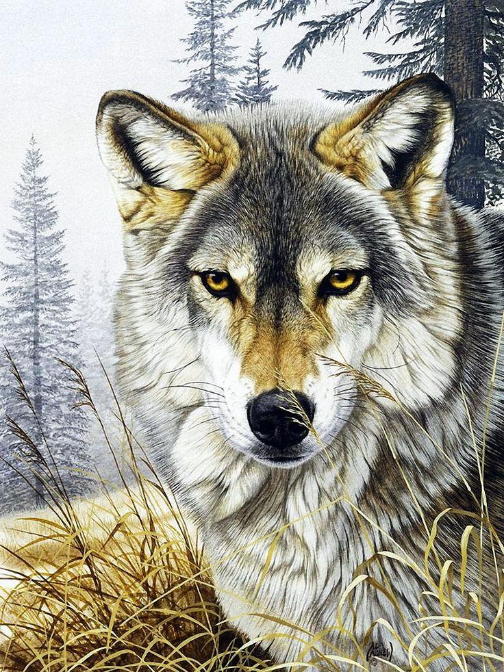 Пух картинки, открытка волчонок