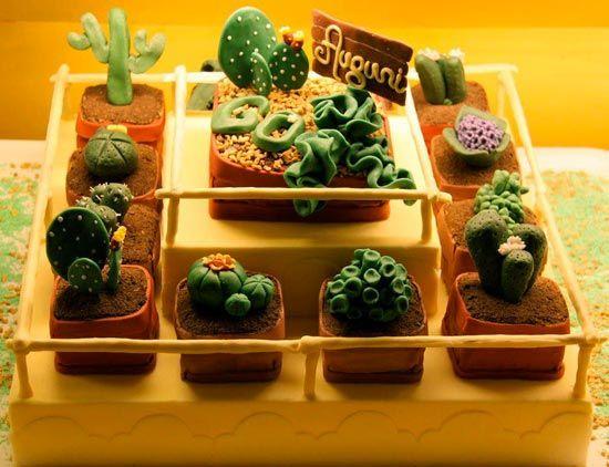 cactus - cakemania.it