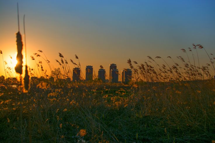 Sunset in Delta by Iulian Safta on 500px