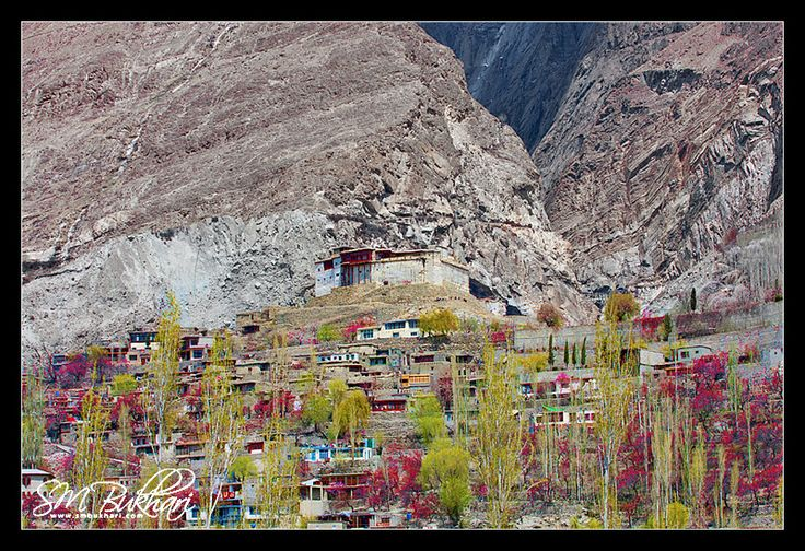 Baltit Fort: In The Season Of Blossom