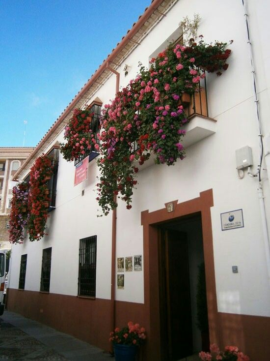 17 best images about fachadas con flores on pinterest - Rejas para balcones ...