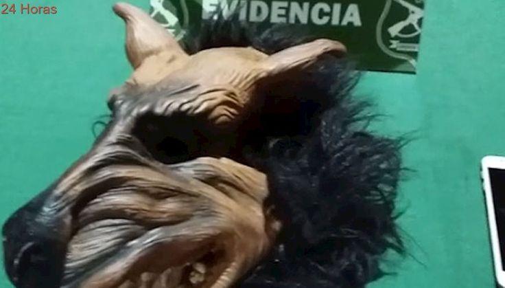 """Drácula y """"hombre lobo"""": Detienen a delincuentes tras serie de asaltos usando máscaras de Halloween"""
