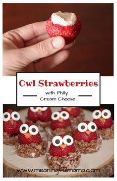 Owl Strawberries - Meaningfulmama.com