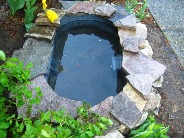 14 backyard turtle pond images on pinterest outdoors box turtles