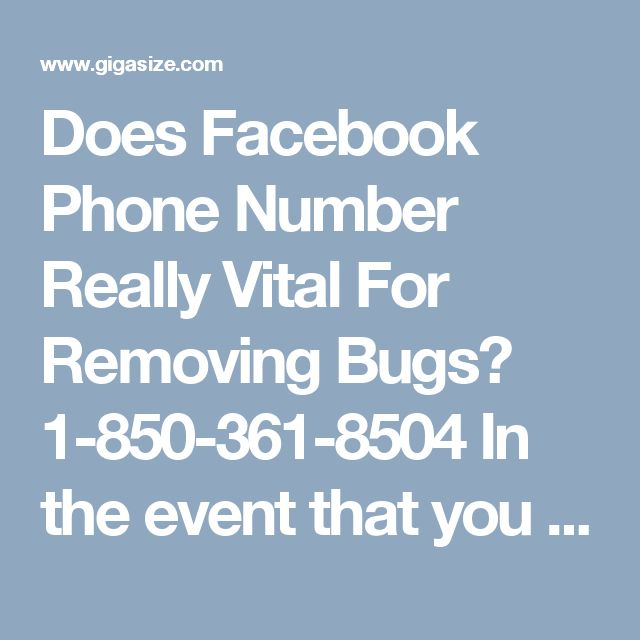 Does Facebook Phone Number Really Vital For Removing Bugs? 1-850-361-8504 In the event that you stuck some place and need speedy help, you can directly bring our superfluous administrations for getting the best quality arrangements and accommodating help from our technical group throughout the day. For that, you need to call at our Facebook Phone Number 1-850-361-8504 which can be dialled from any piece of the globe. For more visit us our website for anytime visit…