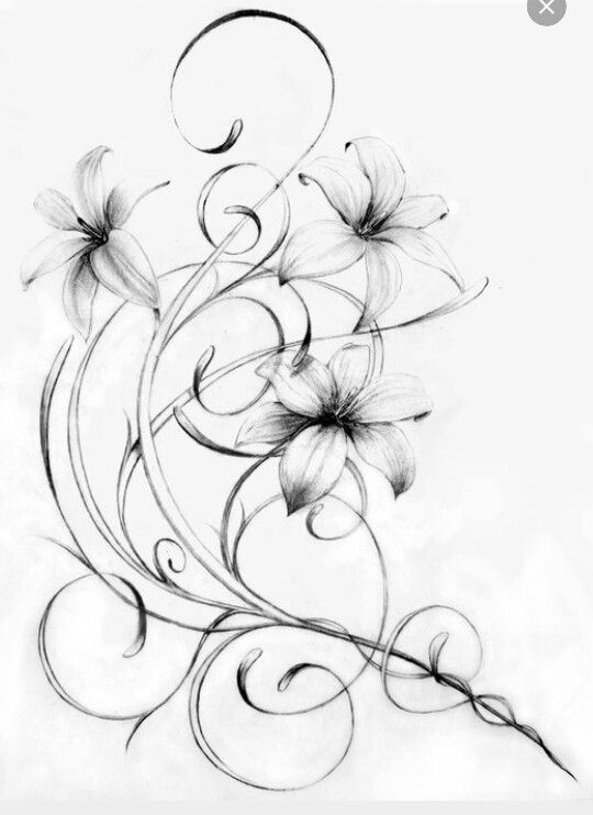 Lilies and Filigree - add to skull tattoo, up and around the side/top