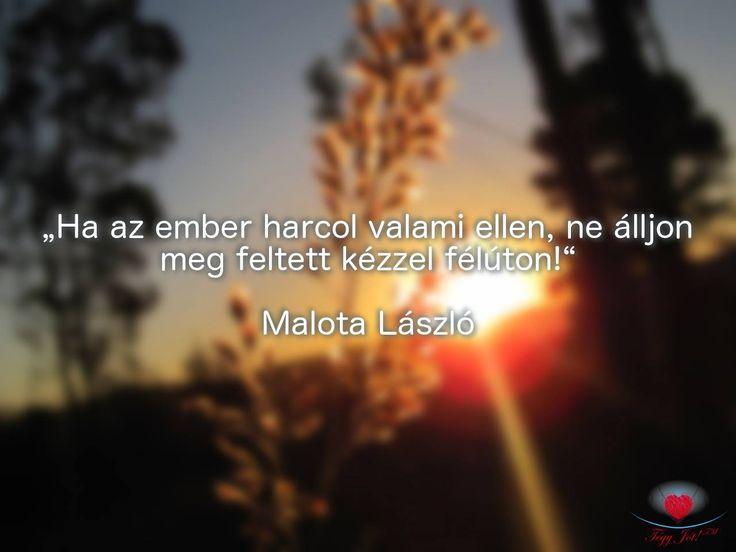 """""""Ha az ember harcol valami ellen, ne álljon meg feltett kézzel félúton!"""" Malota László"""