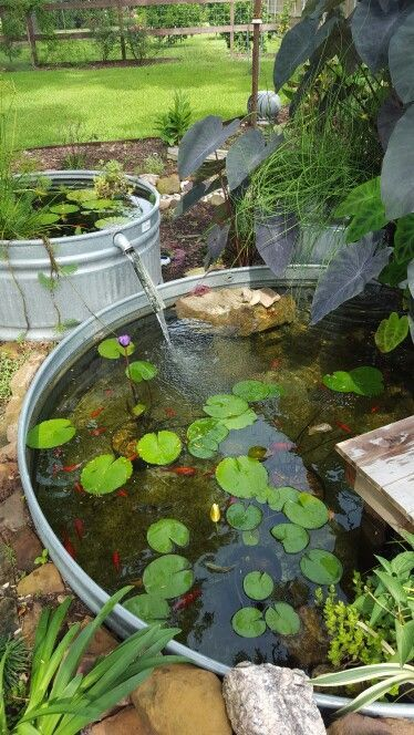 A tiered-fountain stock tank pond! I wish I had thought of this. A gentle spilling fountain like this won't bother the fish but still provide oxygen. If you get bored of your small water garden, simply add another tier! www.ContainerWate...