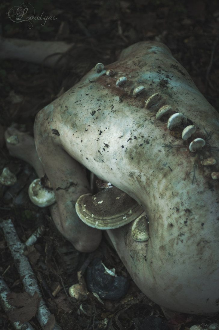 Exosquelette by Lorelyne
