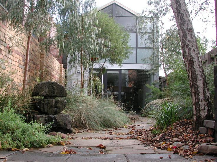 Sam Cox landscape design Native garden in a tight inner city space.