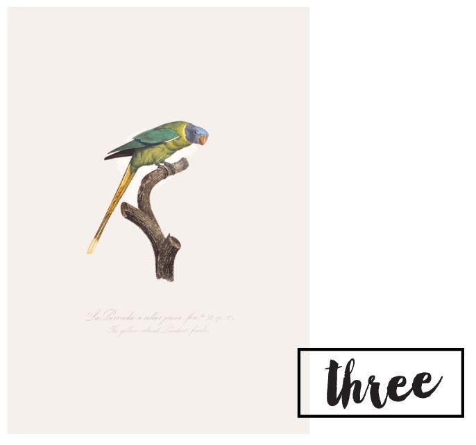 Faves + Spring Art // on CAROLE+ELLIE