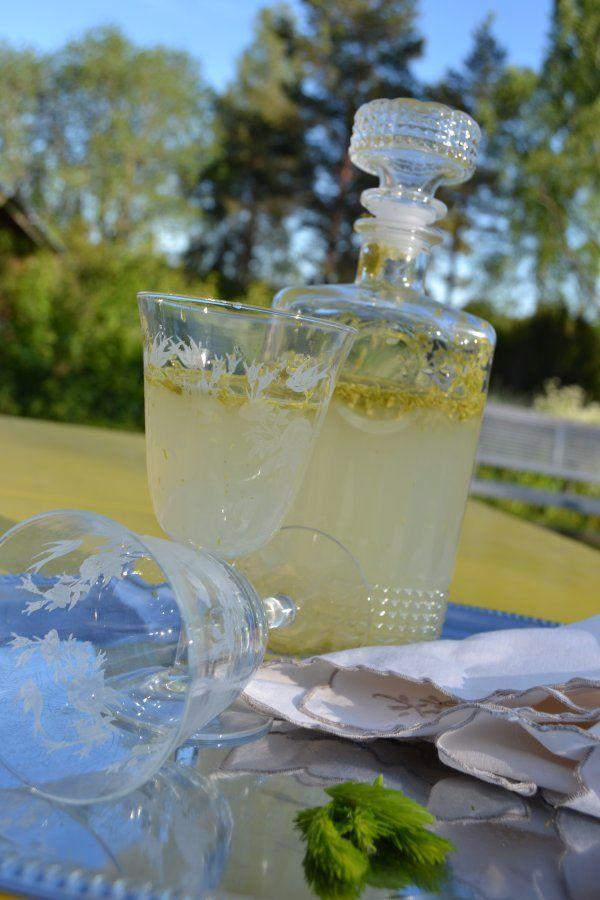 Jovelan talopäiväkirja: Kuusenkerkkä (sitruuna-) limonadi