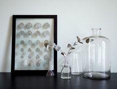 Transparenter+DIY+Bilderrahmen+für+deine+Pflanzen