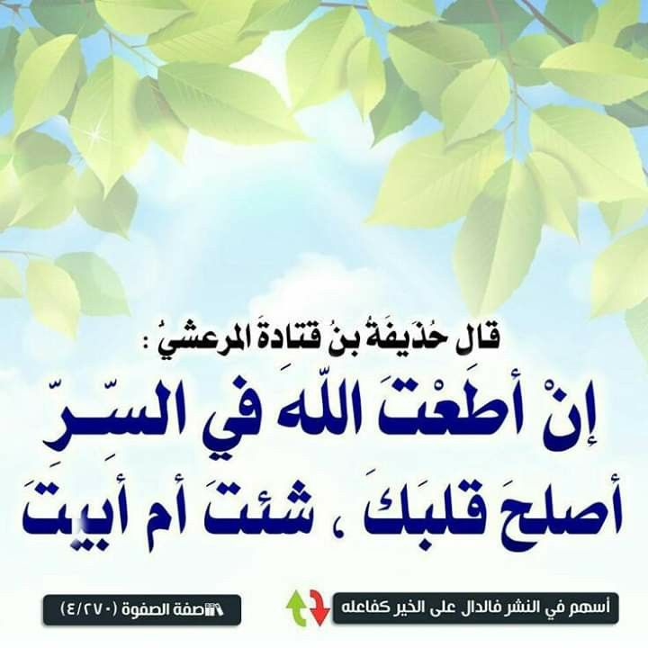 Pin By Semsem Batat On مواعظ العلماء Islamic Quotes Arabic Quotes Words