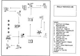 Rally novice course for my dog pinterest