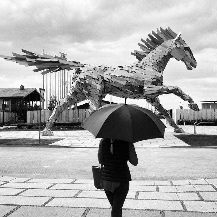 Photo: Gabor Kanovits  The horse statue in Hipoarena