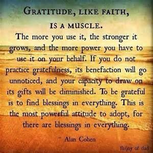 30c33de6858c149920c8265376ccc4bf--gratitude-ideas-practice-gratitude.jpg