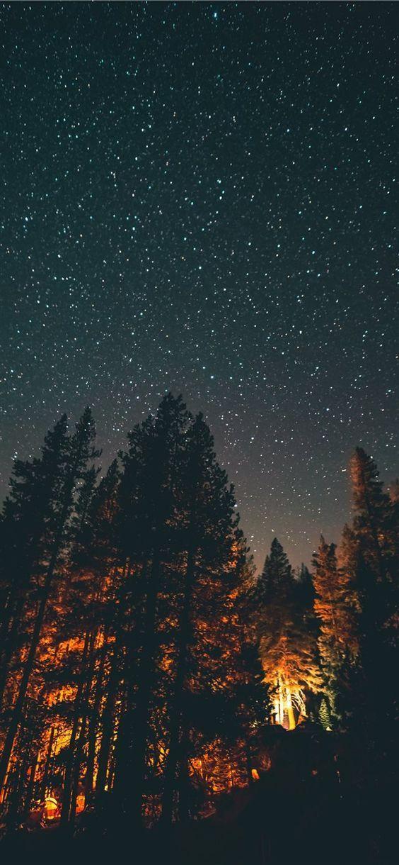 Night Stars Trees #wallpaper #lockscreen