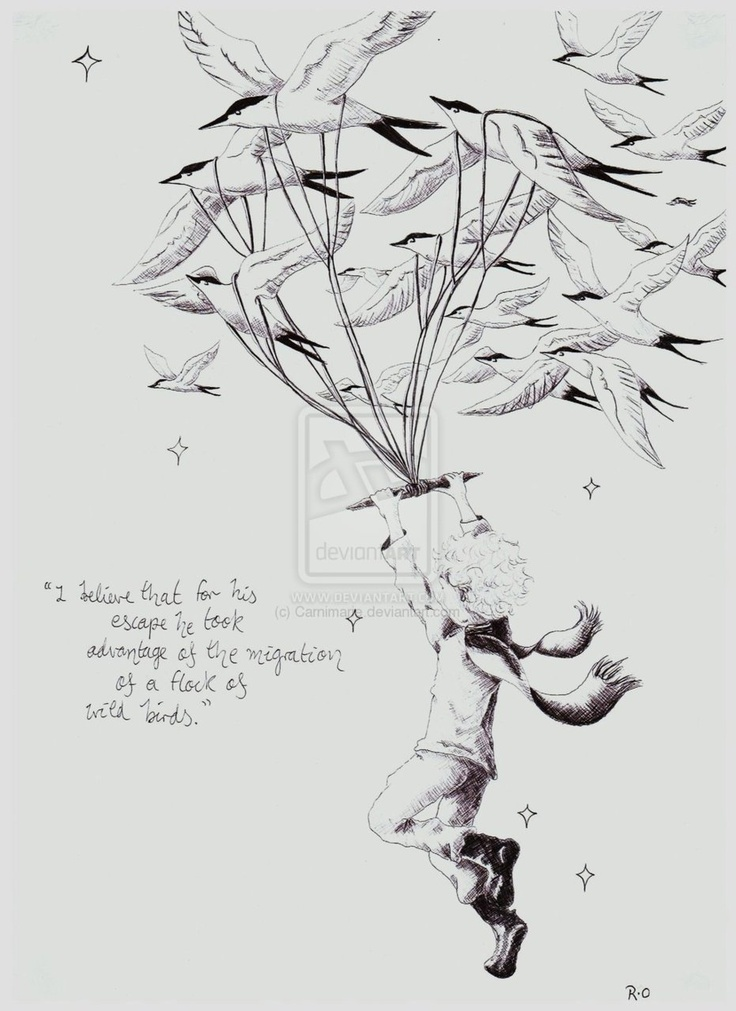 27 best the little prince images on Pinterest | The petit prince ...
