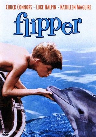 Flipper. I loved this show on Sunday mornings.