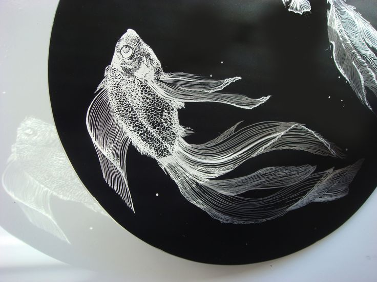 Gold fish in a black drop of glass