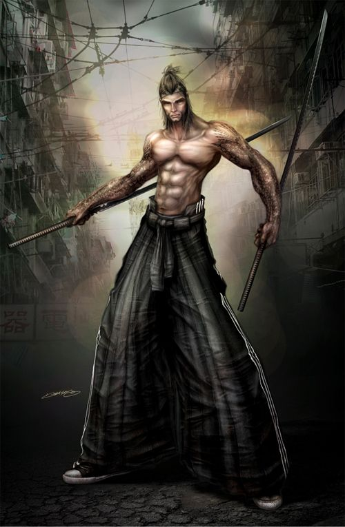 Double sword swordsman artworks illustrations