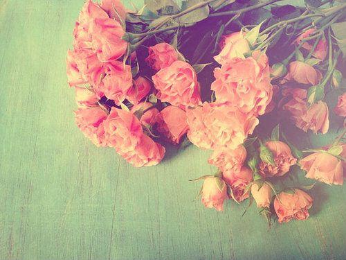 rózsás borítókép