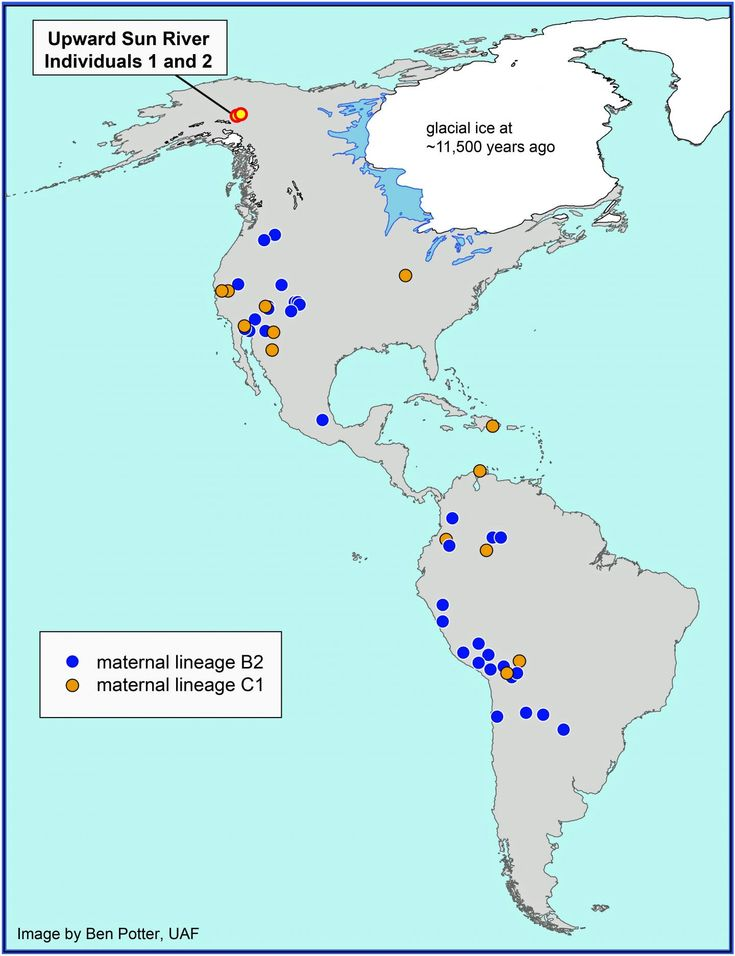 an analysis of the concept of segregation in the south america Teaching the history of race in latin america  and africa than with the south american colonies  segregation of the races in spanish america clashed with the .