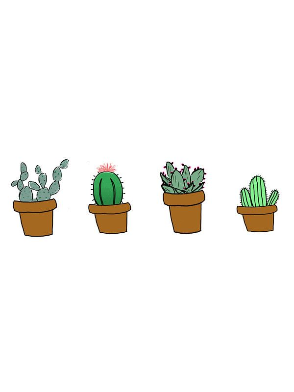 Cactus hipster drawing by youtuber club