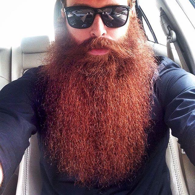 #beard #beardup #beardgang #beardsofinstagram #beardedgentlemen #beardlife #beardedbrothers #beardmovement #jointhebeard #envybeards #beardedvillains #pogonophile #mustache #ginger #gingerbeard #redhead #redbeard #dapper #picoftheday #photooftheday #selfie #instacool #instagood #instagram #tbt
