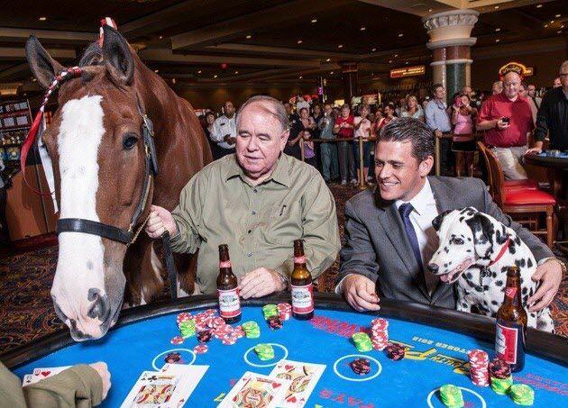 A strange blackjack tournament.
