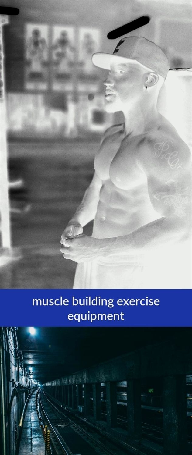 muscle building exercise equipment_138_20190502075227_51