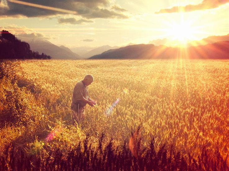14 Mayıs Dünya Çiftçiler Günü Tüm Çiftçilerimize Kutlu Olsun, Hasatınız Bereketli, Mahsulünüz Bol Olsun