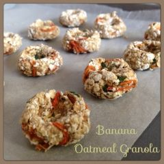 My Mind Patch: Homemade Rabbit Treat - Banana Oatmeal Carrot Granola