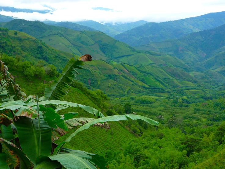COLOMBIA @Chloë Grace this is my beautiful country