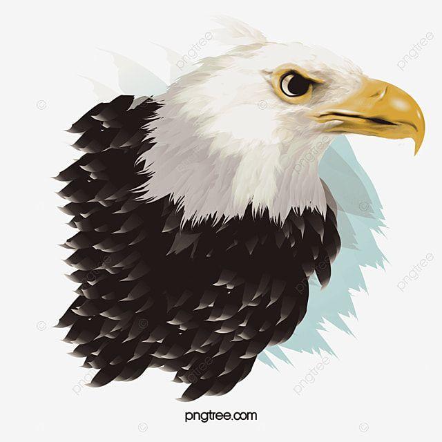 Vector Illustration Eagle Eagle Vector Eagle Clipart Eagle Png Transparent Clipart Image And Psd File For Free Download Vector Illustration Eagle Vector Illustration