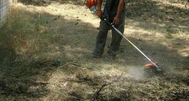 Ανακοίνωση για τον καθαρισμό οικοπέδων από τον Δήμο Κεφαλονιάς - Νεα, Γενικες πληροφοριες.