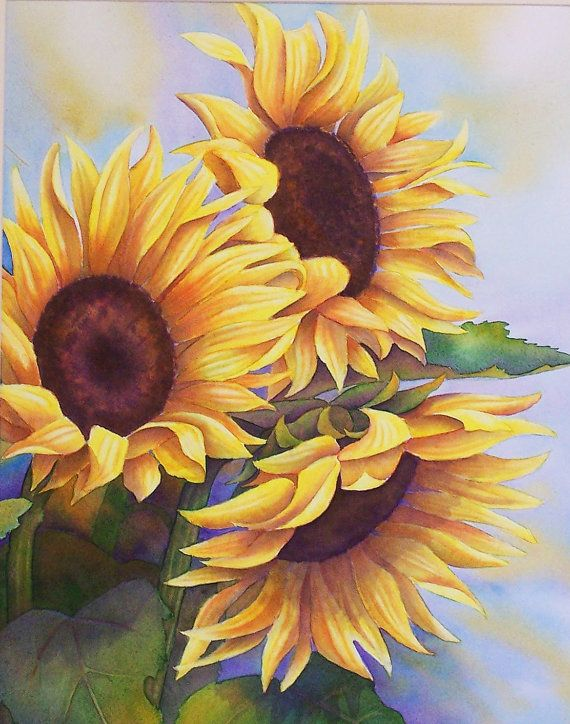 Sunflowers Watercolor Painting by sherryroper