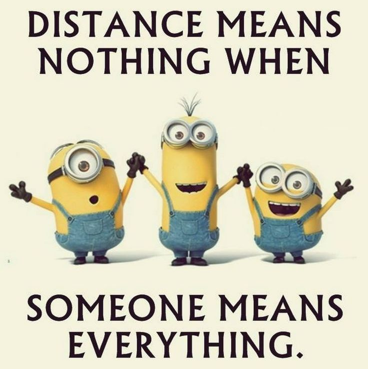 LOL Funniest Minions Comedian Quotes (04:36:10 AM, Thursday 03, September 2015 P... - 03, 043610, 2015, Comedian, Funniest, funny minion quotes, Lol, Minion Quote Of The Day, Minions, Quotes, September, Thursday - Minion-Quotes.com