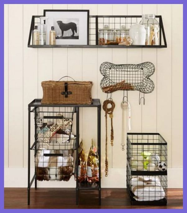 Pin By Maddie Lorraine On Pets In 2020 Dog Rooms Dog Spaces Dog Bedroom