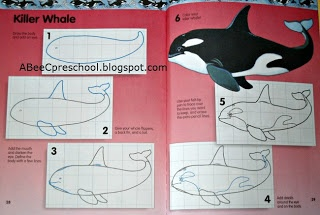 Ocean Theme: We had a guided drawing lesson on how to draw a Killer Whale A, Bee, C, Preschool