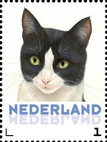 Stamp: Domestic Cat (Felis silvestris catus) (Netherlands - Personalized stamps) (Cats, Francine van Westering) Col:NL 2015-081